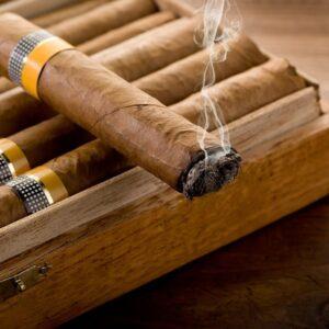 تنباکو - رایحه تنباکو