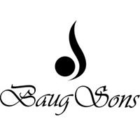 بیگ سونس   Baug Sons